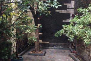 Cho thuê biệt thự Quận Phú Nhuận – Đường Trương Quốc Dung